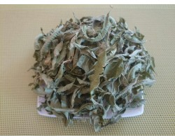 Verveine odorante bio feuille à feuille sèche