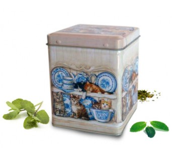 Boîte carré Chat - 100g