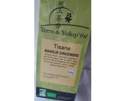 Tisane Mangue-Gingembre bio